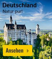 Feriendorf Ferienhaus Deutschland